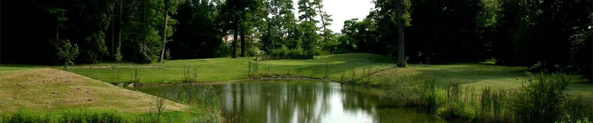 golfdesenart.jpg